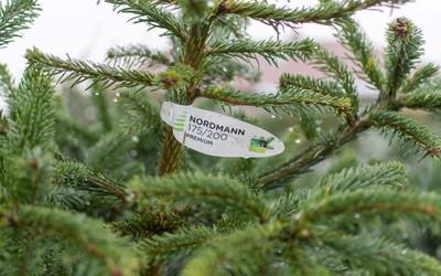 Vanderlinden & Vangilbergen Plantencentrum - Acties & Promoties